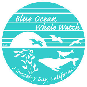 monterey whale watching logo